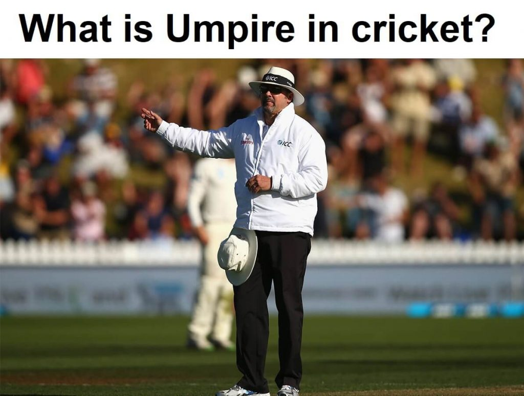 Umpires in cricket are the referees of the game play