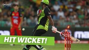 What is hit wicket in cricket