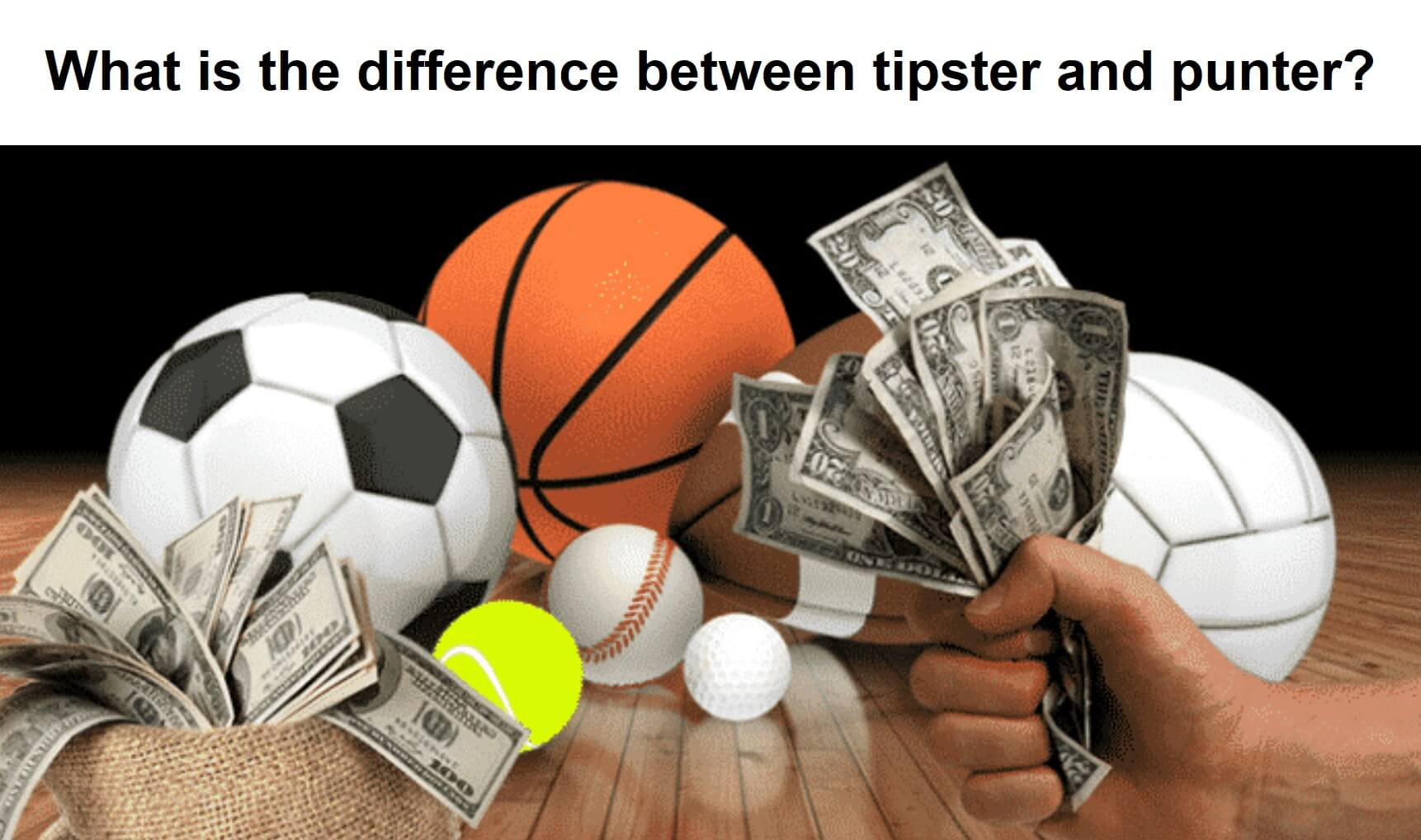 Difference between tipster and punter