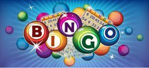 Bingo game guide