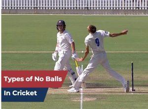 No ball in cricket